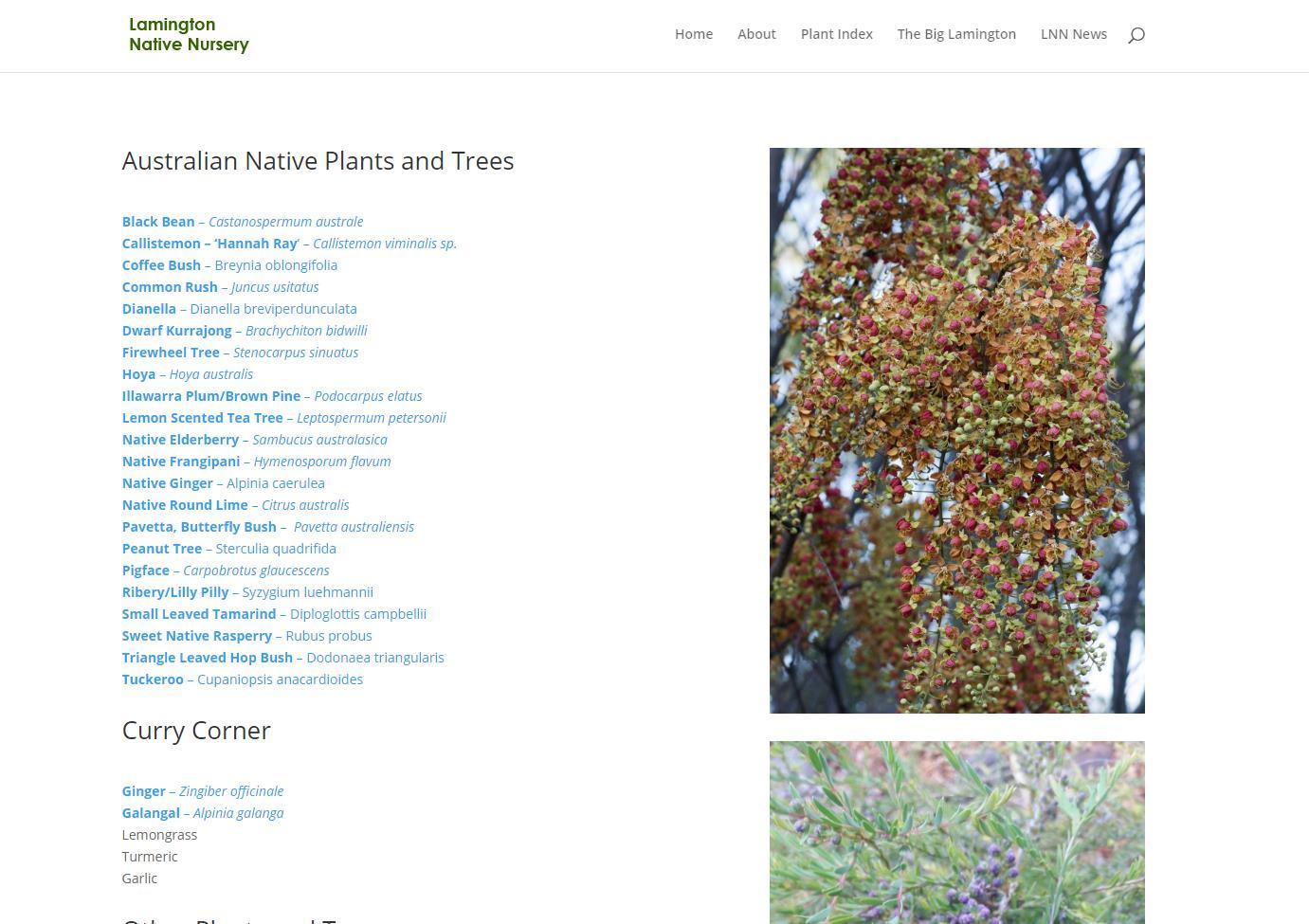 New Plant Index