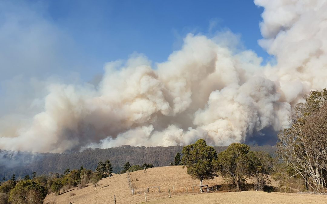 Three weeks under threat of fire – 19 September 2019