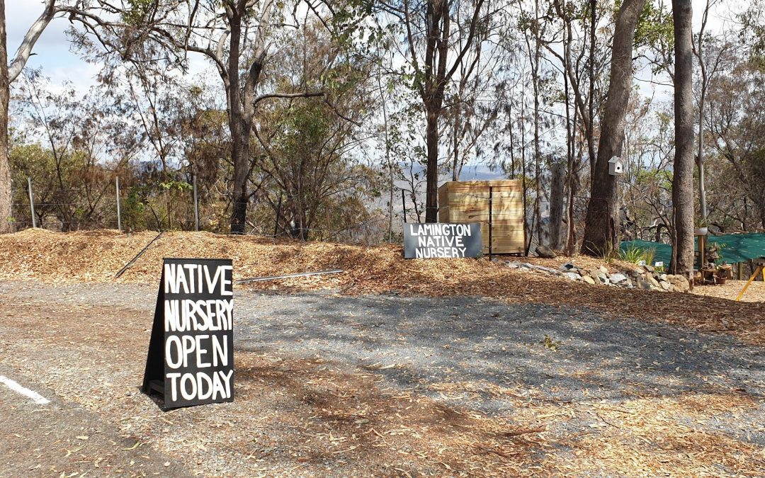OPEN FOR BUSINESS: support the Scenic Rim after bushfires