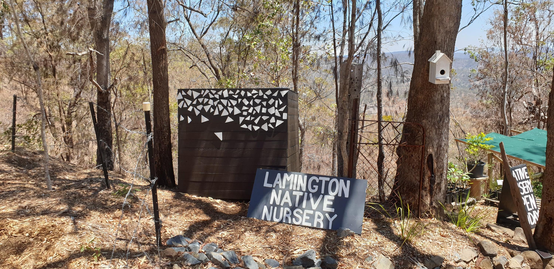 The Big Lamington - November 2019