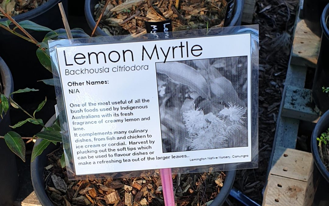 New labels means more Native plant info