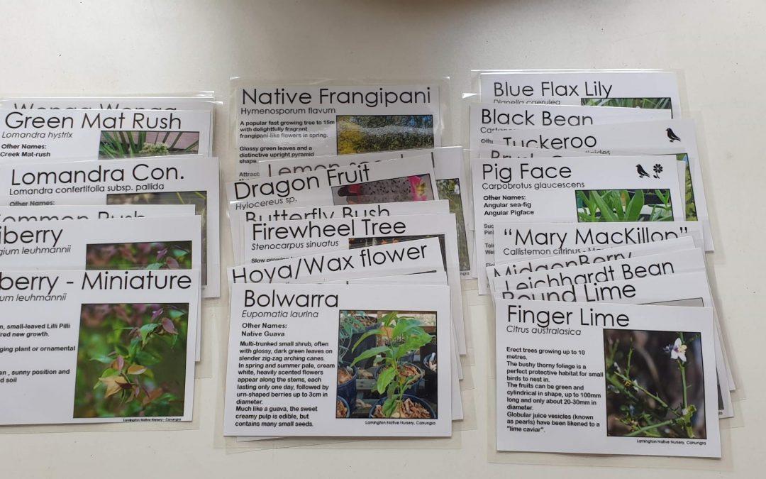 New Colour Plant Labels